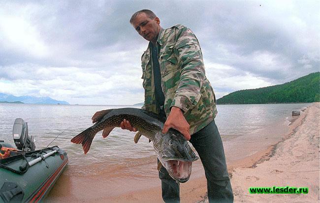 рыбалка на ладожском озере тайполовский залив